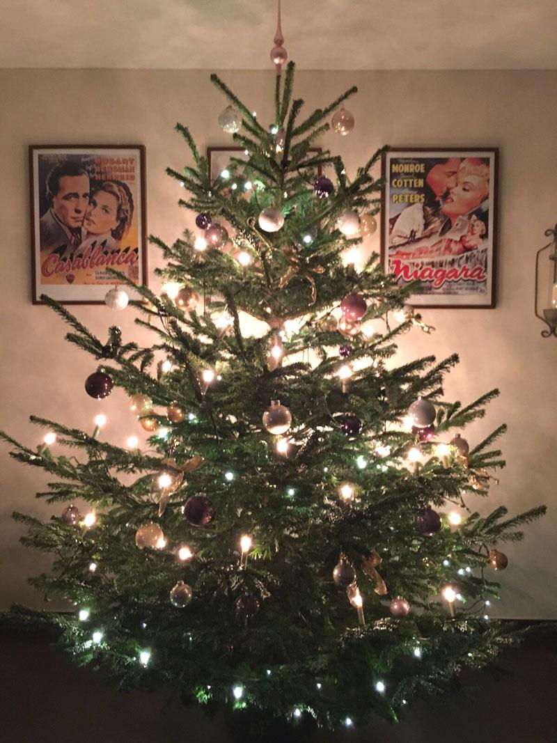 Warum Wird Der Weihnachtsbaum Geschmückt.Weihnachtsbaum Geschmückt Hof Behrens Hof Behrens In Dungelbeck