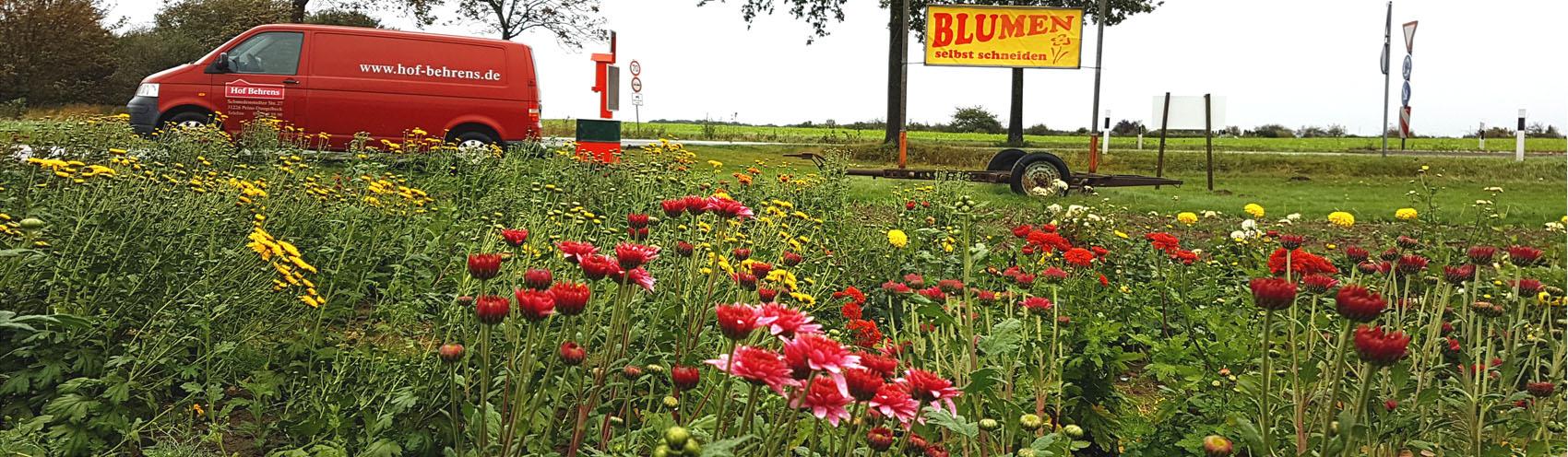 Blumenfelder Hof Behrens